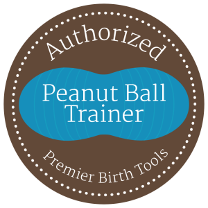 Peanut Ball Trainer