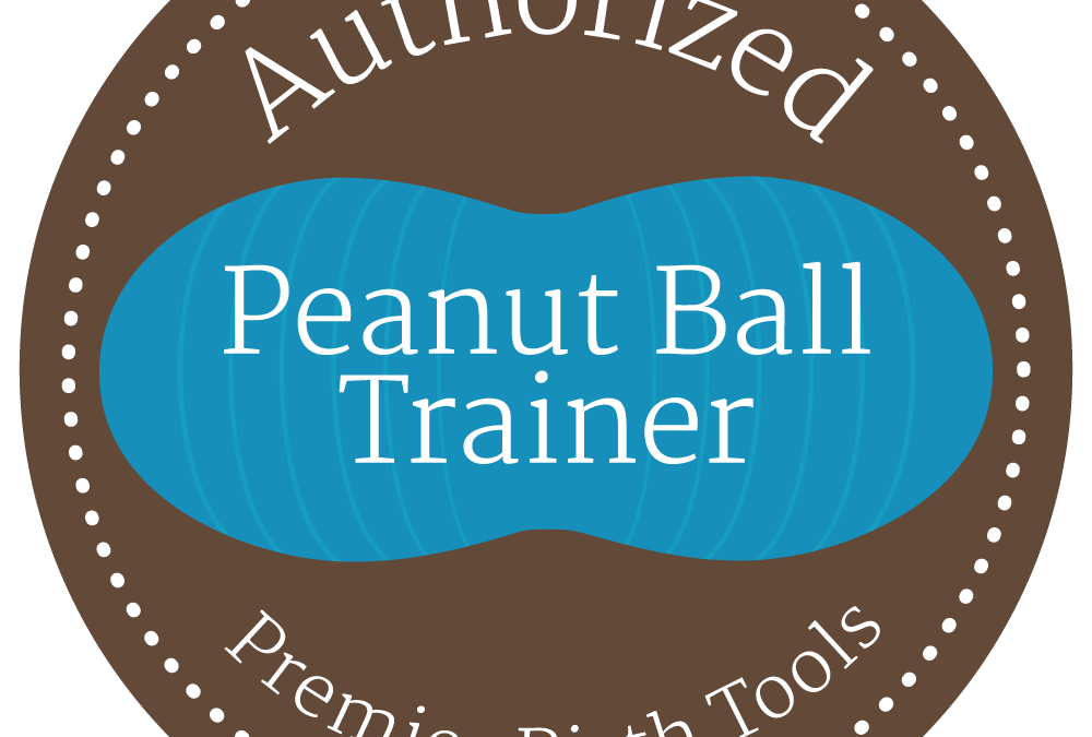 Become a Peanut Ball Trainer With Our Authorized Peanut Ball Trainer Program!